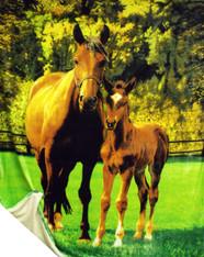 ATJ SHERPA FS 34 (GRASSY FIELD HORSE)   - R