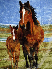 MARE AND FOAL  HORSE  , 2 PLY , DOUBLE SIDED HEAVY WEIGHT - R