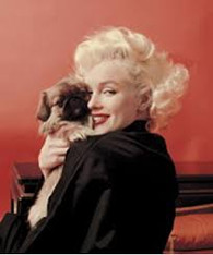MARILYN AND PUPPY- R