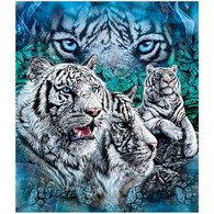 12 WHITE TIGERS  - R