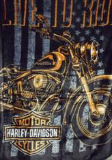 HARLEY DAVIDSON NOMAD R