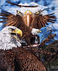 13 EAGLES