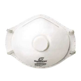 Generic N95 Dust Mask.