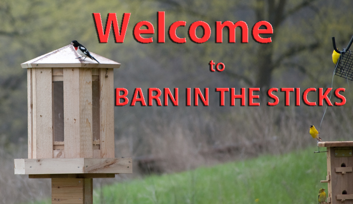 barninthesticks-home.jpg