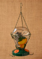 Hanging Glass Oriole Bird Feeder