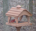 Pavilion feeder with male cardinal.