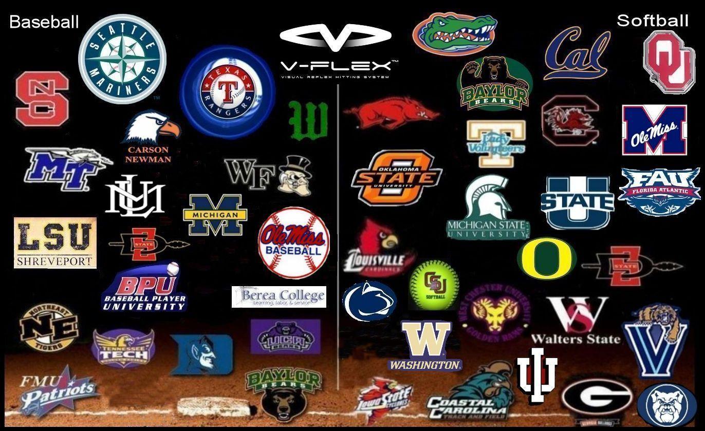 v-flex-teams-2014-new-8.jpg
