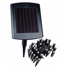 Solar LED Plant and Border Light