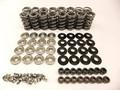 """BTR .660"""" lift Platinum Spring Kit -  Titanium Retainers"""