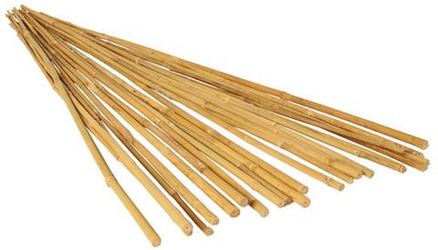 Bamboo Steaks