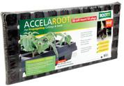 ROOT!T AccelaRoot Starter Plug