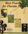 Best Practices for Florida Wines