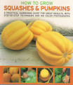 Squashes & Pumpkins, How to Grow