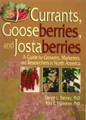 Currants, Gooseberries & Jostaberries