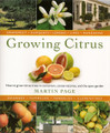 Growing Citrus