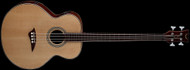 Dean Acoustic/Electric Bass Fretless - GN