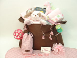 Polka Dot Precious Baby Girl Diaper Bag Gift features stylish Jimeale diaper bag