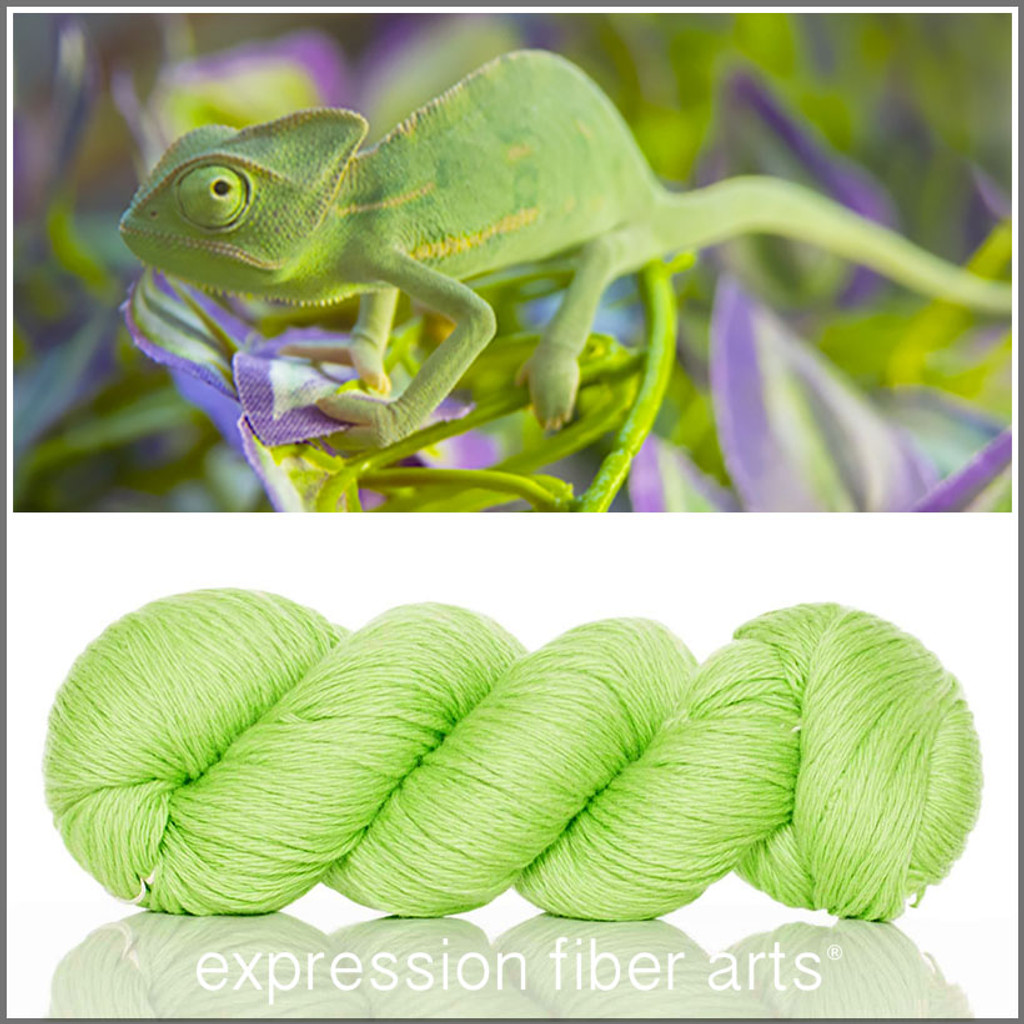 BASHFUL CHAMELEON - 'COZY' Limited Edition Worsted Wool Yarn