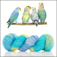 LOVEBIRDS 'RESILIENT' SUPERWASH MERINO SOCK