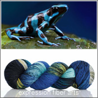 POISON DART FROG 'RESILIENT' SUPERWASH MERINO SOCK