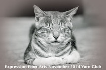 Pre-Order COBBLESTONE KITTEN - November 2014 - Insider's Yarn Club Kit 4
