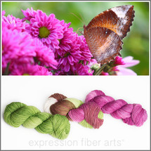 BUTTERFLY WISHES KIT - 3-PLY SUPERWASH MERINO WOOL SOCK