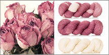 Limited Edition DRIED ROSES KIT 'RESILIENT' SUPERWASH MERINO SOCK
