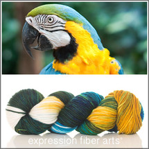 BLUE AND YELLOW MACAW SUPERWASH DEWY DK