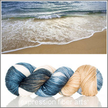 SAND AND SURF SUPERWASH DEWY DK