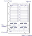 Dugout Line Up Chart Insert (30 charts)