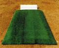 Baseball Pitcher's Mound Wedge