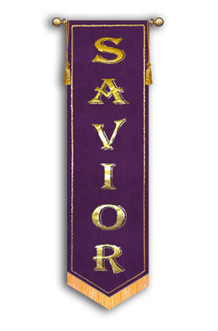 SALE BANNER - Savior SLIM - 7' x 24""