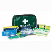 Buy Reliance Handy Travel Kit First Aid Kit in Travel Pouch, Each (RL416) sold by eSuppliesMedical.co.uk