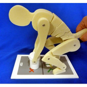 Buy ESP Lifting Manikin (ZKJ-310-K) sold by eSuppliesMedical.co.uk