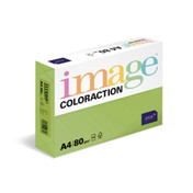 Buy Image Coloraction Paper, Dark Green (Java), A4, x500 Sheets sold by eSuppliesMedical.co.uk