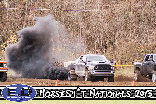 horse-hit-nationals-26.jpg