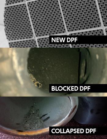 dpf-stages.jpg