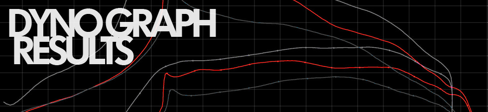 dyno-graph-page2.jpg