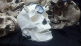 (Unpainted) Limited Edition Skull Airbrush Holder/Air Regulator/ Cleaning Pot