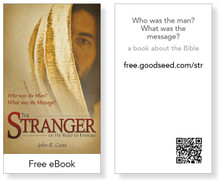 Stranger on the Road To Emmaus eBook Cards (pack of 25)