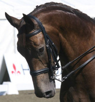 Jeffries IR Double Bridle