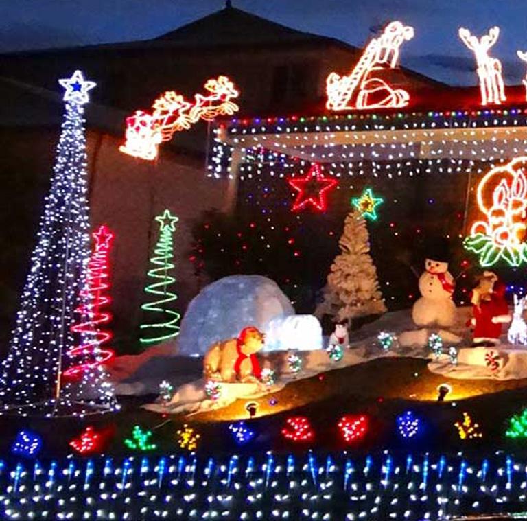 Christmas Trees, Lighting & Decorations