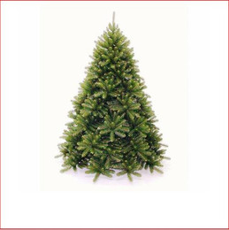 Monarch Evergreen 2.28m