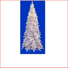 Pencil Pine 2.13m White