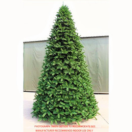 Scandia Spruce 14ft Dark Green