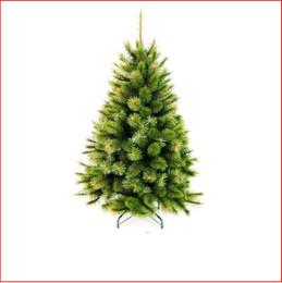 Radiata Balmoral Pine 1.37m