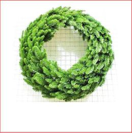 Abies Nordmann Wreath 61cm Green