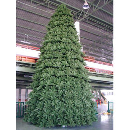Paramount Spruce Outdoor Christmas Tree 12m