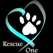 rescue-one.jpg