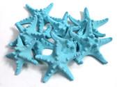 Bumpy Starfish - Light Blue